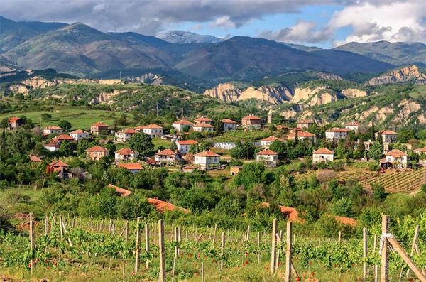 megavino_bulgarije-2017-B600